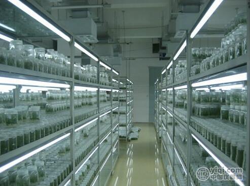 蔬菜组培间规划/风淋室建设
