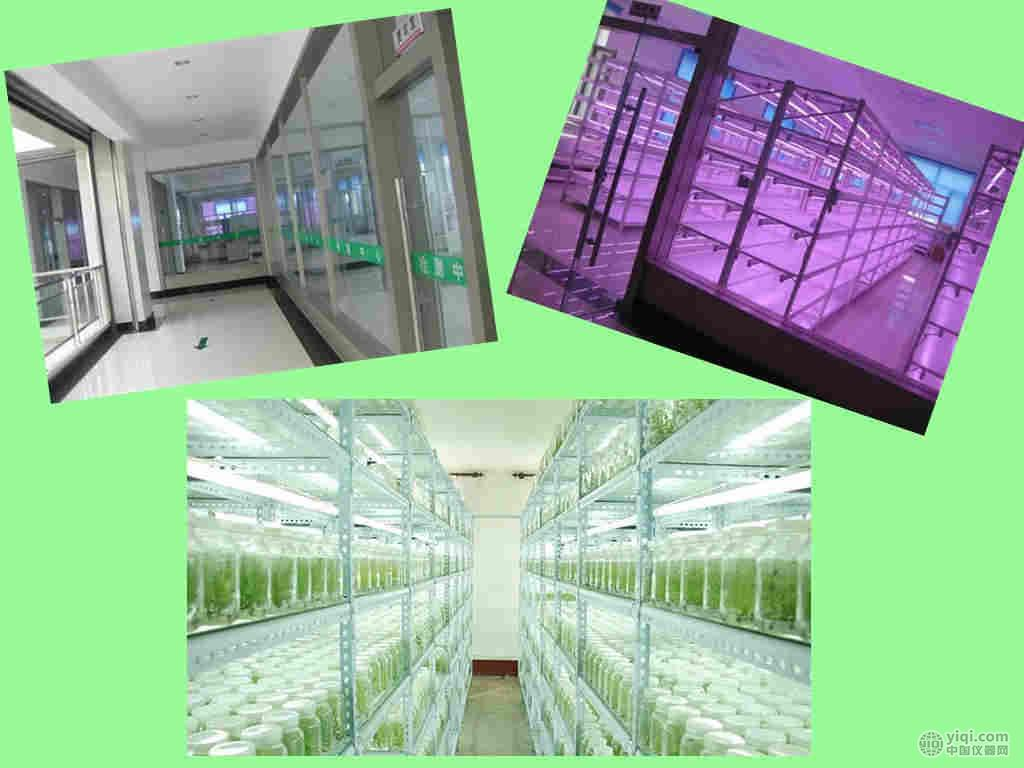 无菌室改造 净化室规划 武汉生物洁净室建设
