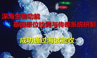 """""""深海生物功能基因原位检测与传感系统研制""""通过海试验收"""