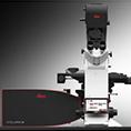 德国徕卡 共聚焦显微镜 STELLARIS